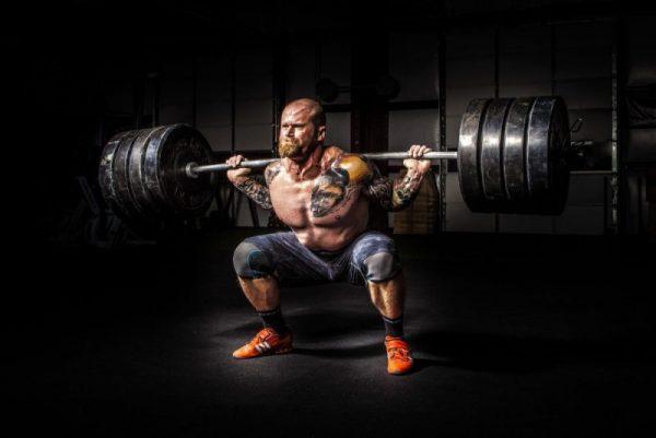 bodybuilding nutrition program