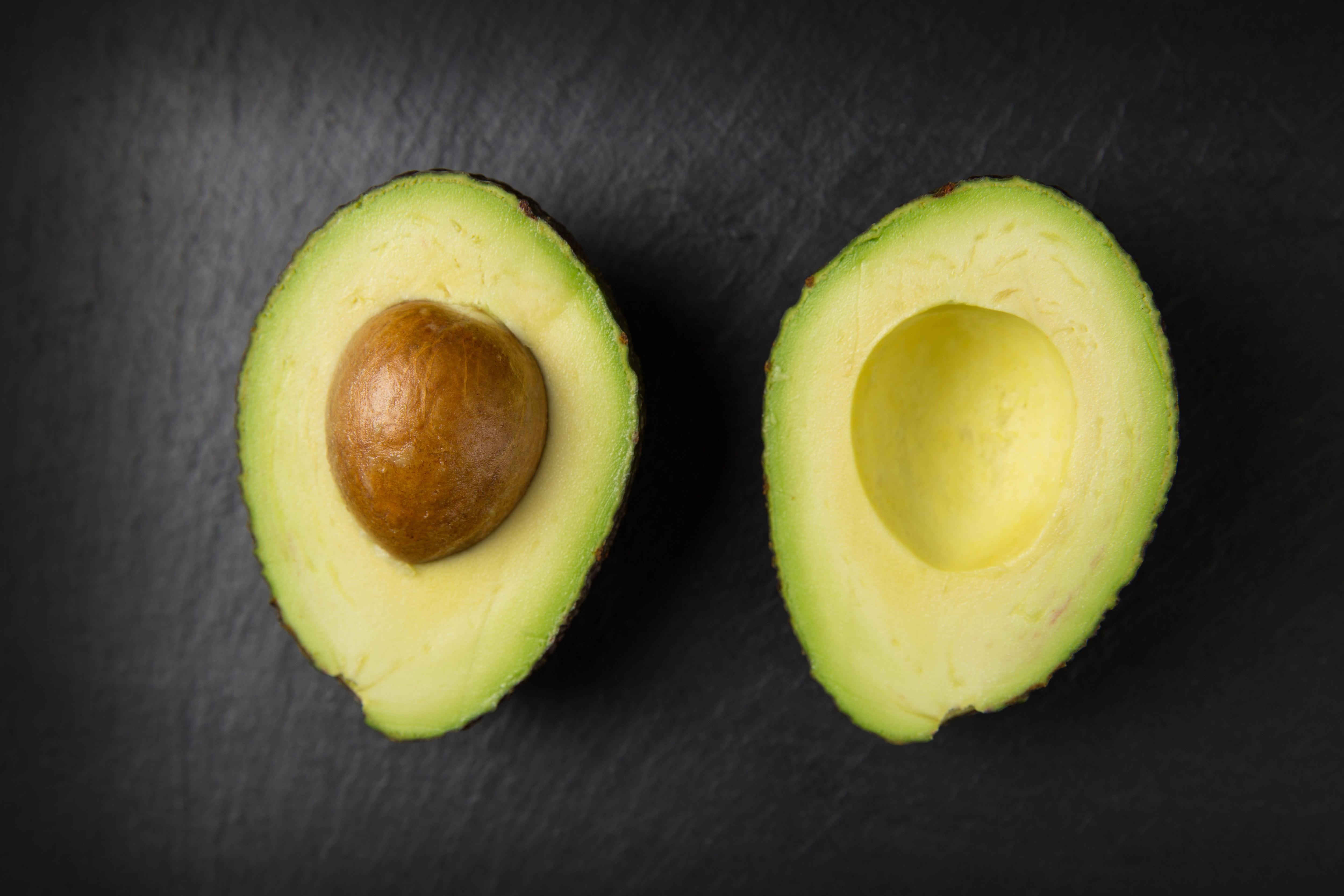 avocado bodybuilding